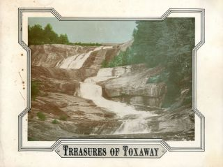 Treasures of Toxaway. Jan C. PLEMMONS
